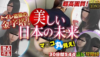 「盗撮見聞録」美しい日本の未来